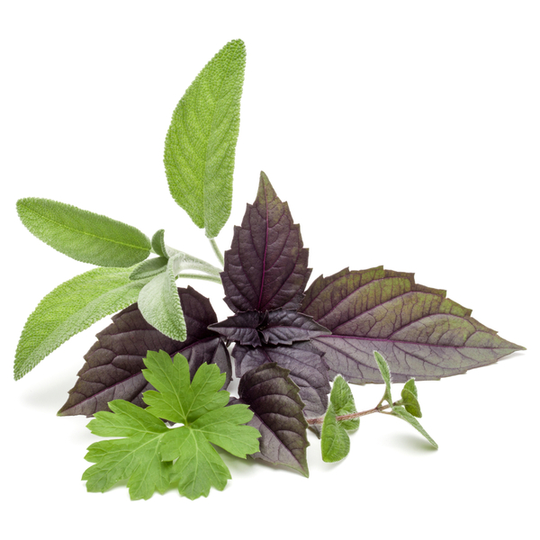 Fresh Herbs (various)